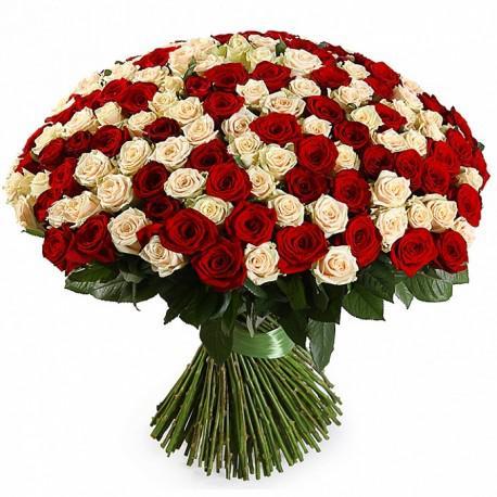 Самое интересное о розах — красота и символика